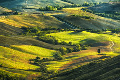 Тоскана, Rolling Hills на заходе солнца ландшафт сельский Зеленый f стоковые фото