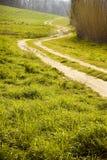 Тосканская извилистая дорога Стоковые Изображения