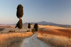 Тосканская сельская местность на заходе солнца, Италия Стоковое Изображение RF