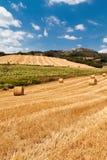Тосканская сельская местность Стоковая Фотография