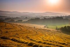 Тосканская сельская местность на зоре с помохом Стоковая Фотография