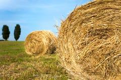 Тосканская сельская местность Стоковое Фото