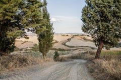 Тосканские дороги стоковые фото