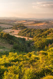 Тосканский ландшафт в теплом спокойном дне, Италии Стоковая Фотография RF