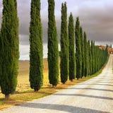 Тосканский ландшафт Стоковая Фотография