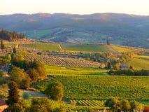Тосканский ландшафт стоковые фото