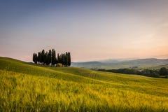 Тосканский ландшафт Стоковое фото RF