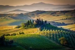 Тосканский ландшафт Стоковое Изображение