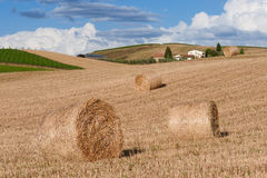 Тосканский сельский ландшафт Стоковое фото RF