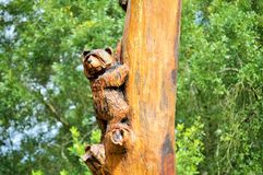 Тотем медведя на дереве Стоковая Фотография