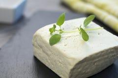 Тофу на подносе Стоковая Фотография