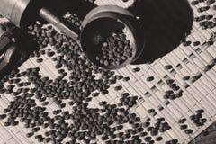 Точильщик перца Стоковое Фото