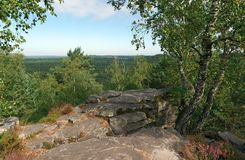 Точка зрения национального леса француза pignons trois стоковые фотографии rf