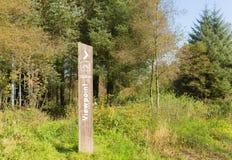 Точка зрения подписывает внутри сельский лесистый сельский район с травой и деревьями взгляд 180 градусов Стоковое фото RF