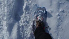 Точка зрения Hiker Ноги крупного плана при snowshoes идя на снег отделывают поверхность Snowshoeing на свежем снеге