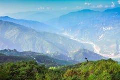 Точка зрения Ramitey, Сикким, Индия. стоковое фото