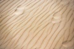Точный желтый песок на пляже стоковое изображение rf
