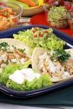 точный tacos лакомки Стоковая Фотография RF