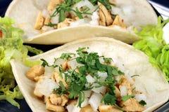 точный tacos лакомки Стоковое Фото
