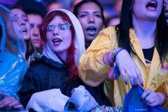 Толпа веселя людей наслаждаясь концертом в реальном маштабе времени Стоковая Фотография