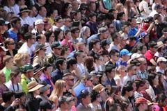 Толпа наблюдая выставку Стоковое Изображение RF