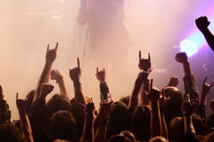 Толпа тряся на концерте Стоковая Фотография RF