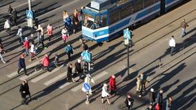 Толпа людей на скрещивании зебры в Таллине, сток-видео