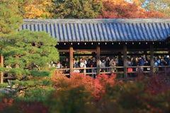 Толпы собирают на виске Tofukuji для того чтобы отпраздновать клен Стоковое фото RF