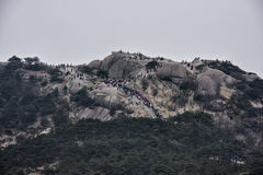 Толпы собирают на Huangshan - желтой горе, Китае Стоковое Изображение