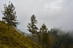 Толстый туман от водопада Sipisopyso на береге озера к стоковое изображение rf
