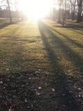 Только перед заходом солнца Стоковые Изображения RF