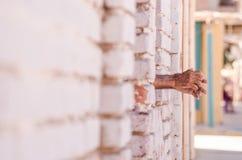 Только руки от окна Стоковая Фотография
