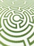 Трава лабиринта Стоковая Фотография