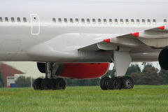 трава авиалайнера Стоковая Фотография RF