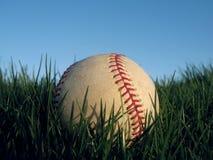 трава бейсбола Стоковые Изображения RF