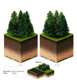 трава блока ландшафта 3D Стоковые Изображения