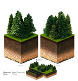 трава блока ландшафта 3D Стоковое фото RF