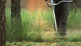 Трава вырезывания человека с триммером Взгляд урожая мужчины в темных одеждах держа ручку триммера строки режа длиной расти видеоматериал