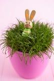 Трава в баке Стоковое Изображение