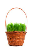 Трава в корзине Стоковое фото RF