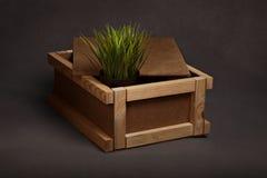 Трава в коробке Стоковые Изображения RF
