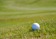 трава гольфа шарика Стоковые Изображения RF