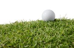 трава гольфа шарика Стоковая Фотография RF