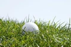 трава гольфа шарика Стоковые Фотографии RF
