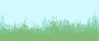 Трава горизонтальная картина безшовная Стоковая Фотография