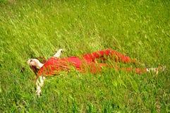 трава девушки Стоковое фото RF