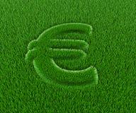 трава евро Стоковая Фотография