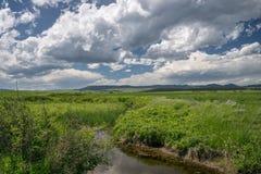 Трава заводи и прерии с горами в расстоянии около Lewistown, Монтаны стоковая фотография