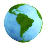 трава земли америки южная иллюстрация штока