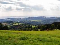 Трава и белое облачное небо, естественная панорама Стоковое Изображение